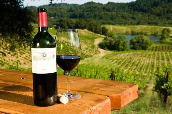 Carteles de Vino Pag. 77 | Desmotivaciones